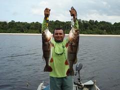 Amazonia 2012 (21)