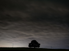 Slieveroe (shaymurphy) Tags: sky tree silhouette night clouds fence dark stars long exposure hill crest explore solitary lampposts brow explored nikond700 nikkor2470 smp1847