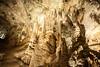 "Grotte du jardin exotique de Monaco (Bru42) Tags: cactus garden de jardin delicious exotic jardim tuin » exótico garten giardino в jardín suculentas kaktus exotique succulentplants сад succulentes jardinexotique exoticgarden esotico heerlijke giardinoesotico exotischergarten plantesgrasses exotische кактус exotischer саду herrliche экзотический succulento восхитительный заводы plantascarnosas jardínexótico fettpflanzen piantegrasso succulentplanten exotiquejardintuincáctusplantassuculentas deliciosasjardimexótico «сочные 仙人掌的美味多汁的""植物""的异国情调的花园花园 サボテン気持が良い「みずみずしい植物」外来種庭庭園"