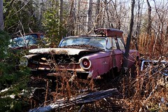 DSC07057 (Moodycamera Photography) Tags: old ontario bus fall cars truck lights sony engine 4th line junkyard hdr wrecks rockwood a5000 nassagaweya topwmaw