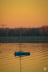 2015-11-01_Q8B4025 © Sylvain Collet.jpg (sylvain.collet) Tags: autumn france nature automne sur marne vairessurmarne vaires