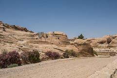 DSC_1562 (vasiliy.ivanoff) Tags: voyage trip travel tour petra jordan journey traveling neareast الأردن البتراء петра иордания ближнийвосток الشرقالاوسط خاورنزدیک המזרחהקרוב