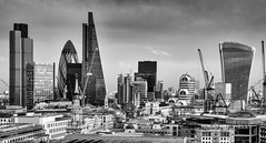 City view from St.Paul's Cathedral (TimeTraveller37) Tags: city blackandwhite bw art skyline architecture composition mono evening stpaulscathedral lloyds gerkin walkietalkie lloydsoflondon londonist 1755mm londonicons canon7d thecheesegrater architecturalicons