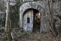 Château de Chabassière (Jean-Luc Brunet) Tags: ruines châteaudechabassière