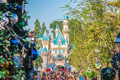 Looking down Main Street at the Castle (Domtabon) Tags: california christmas castle holidays disneyland christmastree disney mainst dl dlr sleepingbeauty mainstreetusa sleepingbeautycastle disneylandresort mousewait