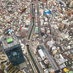 Tiny Tokyo. #japan #tokyo #tokyotower (caseorganic) Tags: japan tokyo tokyotower uploaded:by=flickstagram instagram:photo=11338170395245198805792358 instagram:venuename=tokyoskytreetower instagram:venue=235979239