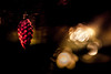 MERRY CHRISTMAS  !! (michaelinvan) Tags: bokeh dof canon primelens 5d2 135mm f2 christmas night lowkey dimlight closeup decoration red golden christmastree light merrychristmas availablelight 2016