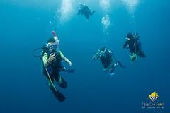 slu_bradh_V55A6046514 (kaufmankronicle) Tags: 2016 diving kidsseacamp stlucia