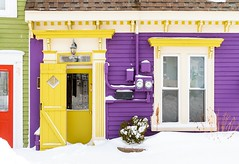 Bright Colours (Karen_Chappell) Tags: house purple yellow door window downtown city urban home rowhouse jellybeanrow stjohns newfoundland nfld snow winter january cold paint painted wood wooden clapboard eastcoast avalonpeninsula atlanticcanada canada