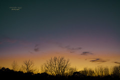twilight time (mariola aga) Tags: belviderespencerpark autumn evening sky clouds sunset horizon trees branches dusk twilight silhouettes pastel colors hue thegalaxy