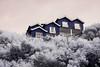 . (The eclectic Oneironaut) Tags: 2016 40d ir canon eos portugal house wood seaside trees arboles casa madera blue sao pedro de moel