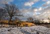 Winter at the Hatertse Vennen (www.eusfotografie.fotoport.nl) Tags: olympusem1markii olympus olympusomd olympusmzuikodigitaled1240mmf28 olympus1240mm zuiko olympusmzuikodigitaled40150mmf28 olympus40150mm hatertsevennen overasseltsevennen hatert overasselt heumen wijchen ven landschap landscape nederland netherlands holland moor winter snow water sunrise sunset zonsopkomst zonsondergang