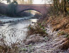 Bridge (enneafive) Tags: railway bridge borgloon colen walking biking trail omd em5 olympus