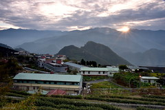 [Countryside Sunrise] (miltonsun) Tags: countryside sunrise alishannationalforestrecreationarea chiayicounty taiwan architecture building earlymorning landscape mountains clouds sky bright scenery outdoor farms 隙頂 日出 嘉義縣 大象山 隙頂民宿