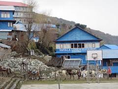 (jahapaula) Tags: nepal travel matka annapurna annapurnabasecamp abctrek ghorepani