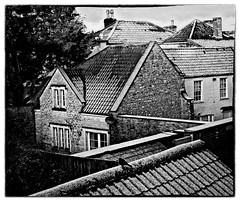 A light sprinkling (with blackbird) (ye sons of art) Tags: rode somerset england uk snow winter roofs tiles bird monochrome blackwhite