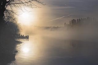 Soleil brumeux - Foggy sun