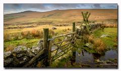 Locked Gate (jeremy willcocks) Tags: lockedgate gate datmoor devon uk england landscape colour wall water puddle posts tors moor grass jeremywillcocks wwwsouthwestscenesmeuk fujixpro2 xf1024mm
