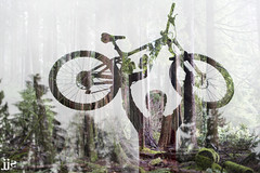 Forest Soul (Jeremy J Saunders) Tags: mountainbike double exposure nikon d800 jeremyjsaunders jjs forest trees old growth cedar