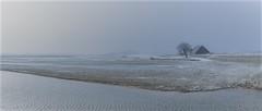Winter landscape (zoomleeuwtje) Tags: biesbos netherlands holland winter landscape farm cold