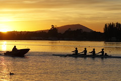 Rowers and Coach (blachswan) Tags: ballarat victoria australia lakewendouree lake water rowers rower rowingcourse rowingboat dawn sunrise coach mountwarrenheip