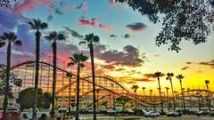 #strohmersgems #sandiego #missionbeach #sunset  #palmtrees #beach #rollercoaster #landmark (alexstrohmer) Tags: sunset beach sandiego landmark palmtrees rollercoaster missionbeach strohmersgems