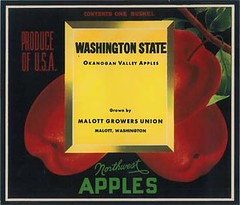 "Wa State Apples • <a style=""font-size:0.8em;"" href=""http://www.flickr.com/photos/136320455@N08/21283910288/"" target=""_blank"">View on Flickr</a>"
