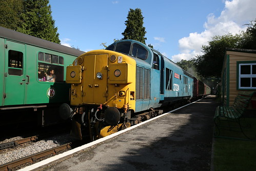 Class 37 - 37 324  Medstead & Four Marks Station