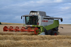 Claas Lexion 550 Combine Harvester cutting Winter Barley (Shane Casey CK25) Tags: county ireland winter horse irish field barley work pull golden hp corn nikon traktor power cut earth farm cork farming grain working harvest knife machine straw ground machinery soil crop combine cutting crops farmer blade trailer agriculture dust pulling contractor chaff collect blades harvester collecting tracteur horsepower 550 trekker claas agri lexion tillage ciągnik traktori killavullen castletownroche d7100 corn2015 harvest2015 harvest15 grain2015 grain15