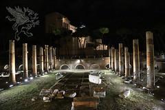 Roma_8016