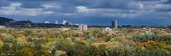 Fall for Montréal (PerfumeG2011 (on and off )) Tags: autumn panorama canada fall nature clouds nikon colours seasons montréal centreville 2015 montréalquébec distantshot d7000 leavescolours nikond7000 lightroom5