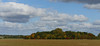 Autumn in a field (yvonnepay615) Tags: autumn sky nature clouds lumix panasonic 45mm coth gh4 coth5