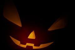 Happy Halloween! (entilza.delenn) Tags: orange halloween shadowplay pumkpin macromondays