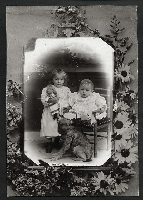 boy portrait dog girl vintage children chair doll child brother porträt pillow hund hairstyle mädchen stuhl junge 1900s kissen kleidung dekoration kleinkind brüderchen kinderschuhe daguerreotypie puppenmutter fotorahmen atelierphoto atelierfoto 1900er dollsmother archivhansmichaeltappen glasplattenfoto