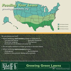 GrowingGreenLawns - Feeding Your Lawn poster (The NYSIPM Image Gallery) Tags: new york grass landscape university state landscaping lawn pennstate program cornell nitrogen ipm epa universityofmaryland usda potassium zoysia cals ryegrass cornelluniversity lifescience phosphorus fertilize fescue turfgrass bermudagrass kentuckybluegrass integratedpestmanagement nysipm ipmcenters feedyourlawn neipmc