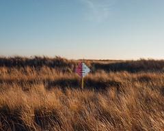 (zaygphoto) Tags: ocean ri beach sign landscape seaside nikon rhodeisland coastal pollution tallgrass deadpan westerly d90 nikond90