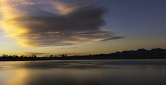 All Lit Up (courtney_meier) Tags: bouldercounty canadiangeese colorado frontrange lagermanreservoir longmont clouds dawn ducks geese morning morninglight reflection reservoir sunrise water waterfowl