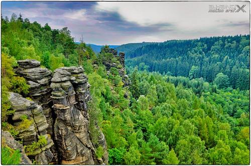 Elbsandsteingebirge - Blick ins Grüne Biehlatal