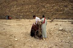 Ägypten 1999 (618) Kairo: Chephren-Pyramide, Gizeh (Rüdiger Stehn) Tags: chephrenpyramide archäologie pyramiden giseh gise giza alǧīza afrika ägypten aldschīza ilgīza egypt nordafrika nordägypten bauwerk sakralbau historischesbauwerk urlaub dia analogfilm scan slide 1980er diapositivfilm kleinbild kbfilm analog 35mm canoscan8800f archäologischefundstätte unescowelterbe unescoweltkulturerbe ancientegypt altägypten misr unterägypten addiltā welterbe weltkulturerbe ägyptologie reise reisefoto tier dromedar leute menschen 1990er 1990s 1999 winter