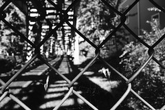 webs (KevinIrvineChi) Tags: webs blackwhite blackandwhite black white rail tracks cta chicago ctabrownline chainlink chainlinkfence contrast outdoors outside outdoor bokeh macro shadows sunny sun lines l elevated elevatedtrain illinois sony dscrx100
