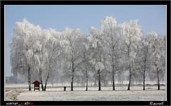 12-16 7408A_MAIL (werner_austria) Tags: winter kälte raureif styria austria astoundingimage