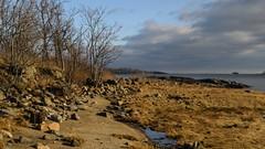 Twin Island (Lojones13) Tags: shoreline shore rocks outdoor bronx newyork morning light winter pelhambay landscape d5300 sun water stone sky nikon hiking clouds nature rural grass