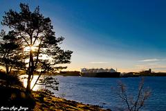 LNG vessels layed up at Bøvågen, Norway (Syriax) Tags: lng lnggemini lngleo offshorevessel offshore giganticship ship bøvågen karmøy haugesund norway bøvågenkarmøy sunnyday landscape landscapenorway