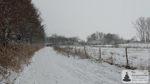 Das Selztal im Schnee