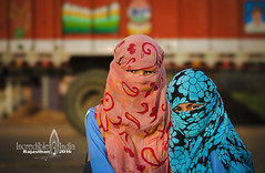 Mysterious Girls (Albert Photo) Tags: india tradition humanities culture asia asian girl lady rajasthan mysterious depthoffield