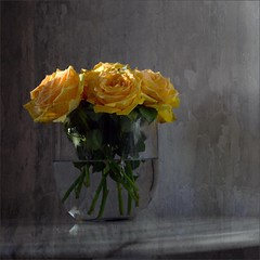 just because ... (me*voilà) Tags: flowers roses yellow vase glass texture home 25 hff