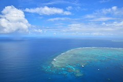 Great Barrier Reef (Yuichi@hk) Tags: australia cairns greatbarrierreef sea seaview cloud clouds sky helicopter 澳洲 大堡礁 開恩茲 凱恩斯 雲 海 ケアンズ グレートバリアリーフ オーストラリア
