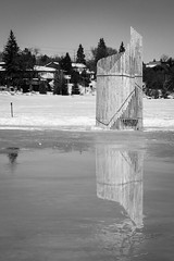 2-18-17 Along Ramsey Lake (AhNicky) Tags: 21817 ramsay lake skate path canon 70d tamron 2470mm f28 family day weekend ushapedtree mcewenschoolofarchitecturestudentbuiltrestarea