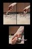 Wiegand-Thumbelina2014-Page8 (rosiewiegand) Tags: thumbelina fairytale fairytalephotography compositephotography photoshop film mediumformatfilm colorfilm comicbook graphicnovel photographicnovel photocomicbook hanschristianandersen modernfairytale grimmsfairytales northphilly northphiladelphia philadelphia digitalart digitalmanipulation photocomposite photobook storybook digitalillustration digitalediting digitalphotography book bookdesign comicbookdesign comicbookillustration graphicnovelillustration graphicnoveldesign