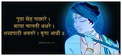 krishna_11 (swapnil.kapsikar) Tags: ala krishna swapnil ovi vari pandharpur wari pandurang alandi tukaram palkhi varkari warkari pandhari dnyaneshwar dnyaneshwari kapsikar warisantanchi